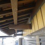 ハトの飛来防止・ハトの糞対策(一般家庭・西尾市)