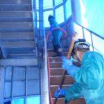 ハトの糞清掃(食品工場・岡崎市)※豊川市、蒲郡市、豊田市も対応します。