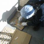 ハト飛来防止施工(病院、豊橋市)※岡崎市、安城市、豊田市、名古屋市も対応します。