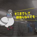 ハトの侵入防止施工・後編(運送会社・安城市)※名古屋市、豊田市、豊橋市も対応します。