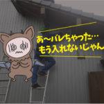 コウモリ対策 施工編(岡崎市・個人宅)※安城市、西尾市、豊川市も対応します。