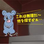 ネズミの侵入対策(豊田市・某企業)※安城市、西尾市、豊川市も対応します。