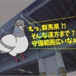 ハトの糞害対策(運送会社:群馬県出張)※名古屋市・刈谷市・安城市も対応します。
