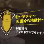 ゴキブリ駆除施工(居酒屋・豊橋市)※岡崎市、豊田市、安城市も対応します。