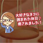 休日の過ごし方(加藤編)猫カフェ~