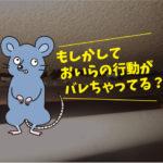 ネズミ生息調査(蒲郡市:一般住宅)