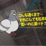 ハト飛来防止施工(工場・石川県小松市)※愛知県名古屋市、豊田市、安城市も対応します。