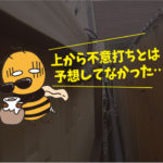 アシナガバチ駆除(岡崎市、一般住宅)*岡崎市、豊橋市は調査見積無料です。