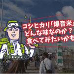小松基地に遠征してまいりました!!