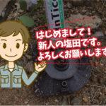 クロアリの駆除施工(自動車ディーラー:豊橋市)※愛知県岡崎市、豊橋市は無料で調査・お見積り致します。