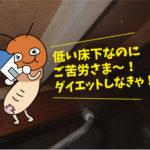 シロアリ防除作業(個人住宅:豊橋市)※愛知県岡崎市、豊橋市は無料で調査・お見積りします。