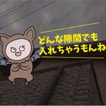 コウモリの見積り、生態(個人住宅:豊橋市)※愛知県岡崎市、豊橋市は無料で調査・お見積りします。