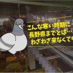 ハトの糞害対策(運送会社:長野県出張)※名古屋市・刈谷市・安城市も対応します。