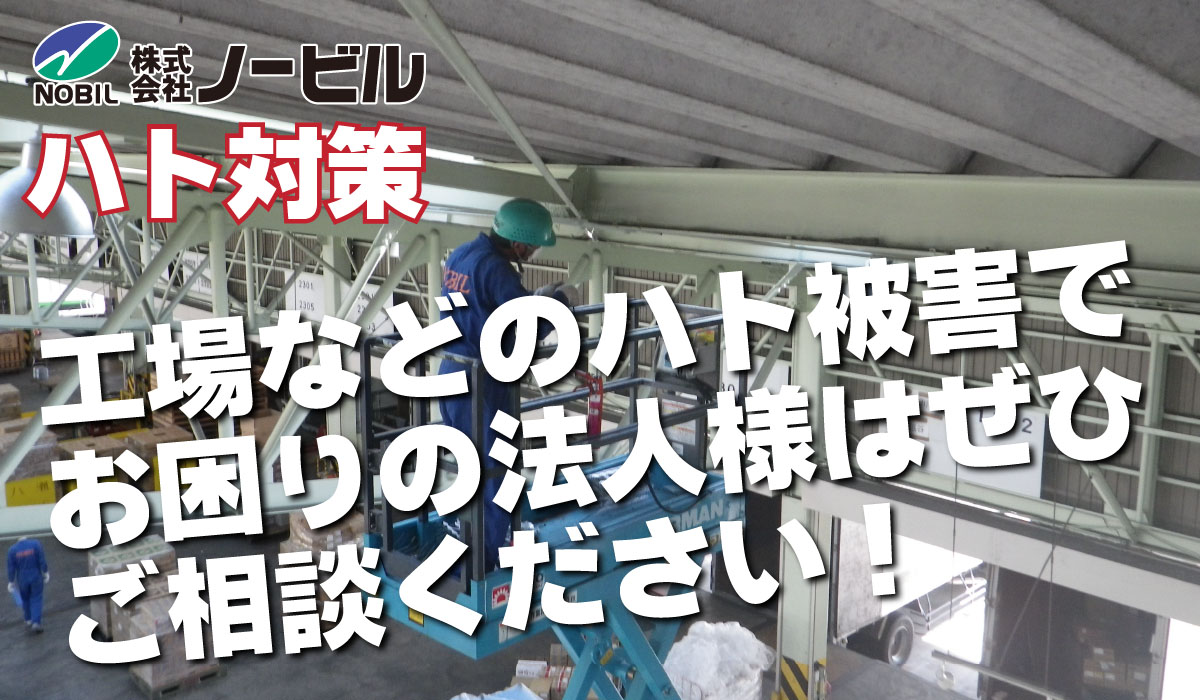 hato-top-img-01