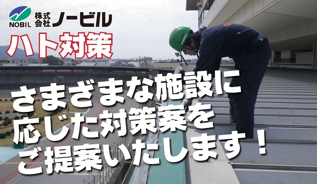 hato-top-img-03